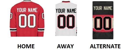 CHICAGO Pro Hockey Number Kit