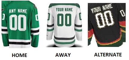 DALLAS Pro Hockey Number Kit