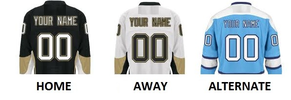 PITTSBURGH Pro Hockey Number Kit