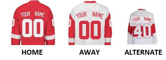 DETROIT Pro Hockey Number Kit