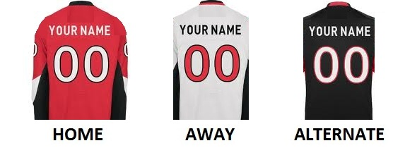 OTTAWA Pro Hockey Number Kit